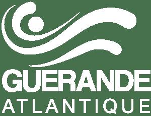 logo-h-white